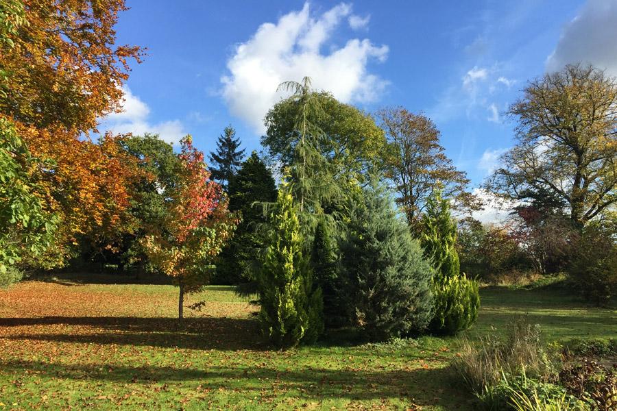 Roseneath House - Garden
